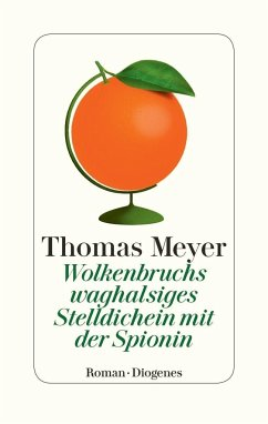 Wolkenbruchs waghalsiges Stelldichein mit der Spionin - Meyer, Thomas