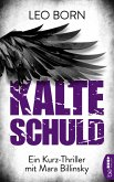 Kalte Schuld (eBook, ePUB)