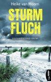 Sturmfluch (eBook, ePUB)