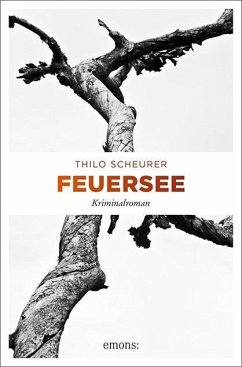 Feuersee - Scheurer, Thilo