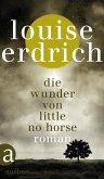 Die Wunder von Little No Horse (eBook, ePUB)