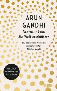 Sanftmut kann die Welt erschüttern - Gandhi, Arun