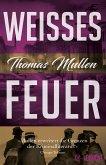 Weißes Feuer / Darktown Bd.2 (eBook, ePUB)