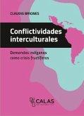 Conflictividades interculturales