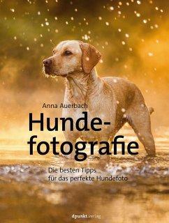 Hundefotografie - Auerbach, Anna