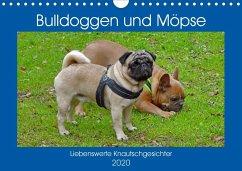 Bulldoggen und Möpse (Wandkalender 2020 DIN A4 quer)
