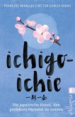 Ichigo-ichie (eBook, ePUB)