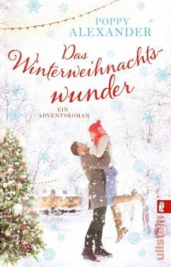Das Winterweihnachtswunder (eBook, ePUB) - Alexander, Poppy
