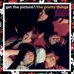 Get The Picture? - Pretty Things,The