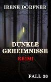 DUNKLE GEHEIMNISSE (eBook, ePUB)