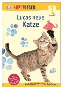 SUPERLESER! Lucas neue Katze / Superleser 1. Lesestufe Bd.13 - Drevenstedt, Ute
