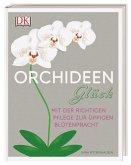Orchideen-Glück