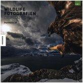 Wildlife Fotografien des Jahres - Portfolio 29