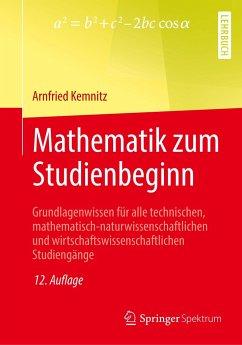 Mathematik zum Studienbeginn - Kemnitz, Arnfried