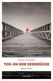 Tod an der Seebrücke (eBook, ePUB)