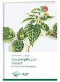 Naturheilpflanzen -Teebuch