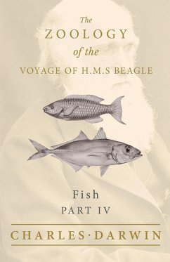 Fish - Part IV - The Zoology of the Voyage of H.M.S Beagle