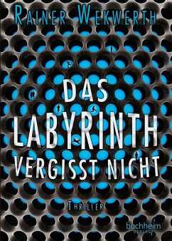 Das Labyrinth vergisst nicht / Labyrinth Bd.4 - Wekwerth, Rainer