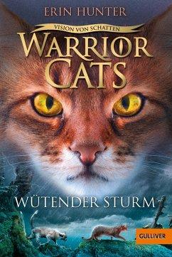 Wutender Sturm / Warrior Cats Staffel 6 Bd.6