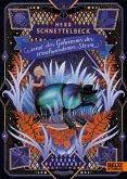 Herr Schnettelbeck und das Geheimnis der verschwundenen Sterne (eBook, ePUB)
