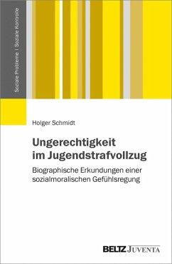 Ungerechtigkeit im Jugendstrafvollzug (eBook, PDF) - Schmidt, Holger