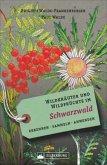 Wildkräuter und Wildfrüchte im Schwarzwald