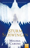 Sturmschwingen (eBook, ePUB)