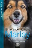 Ein Wunder namens Marley (eBook, ePUB)
