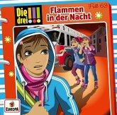 Flammen in der Nacht / Die drei Ausrufezeichen Bd.63 (1 Audio-CD)
