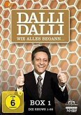 Dalli Dalli - Wie alles begann
