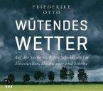 Wütendes Wetter, 1 Audio-CD