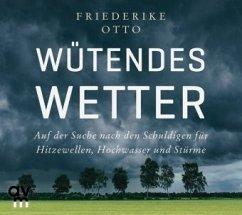 Wütendes Wetter, 1 Audio-CD - Otto, Friederike