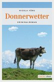 Donnerwetter (eBook, ePUB)