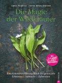 Wildkräuter Kochbuch: Die Magie der Wildkräuter. Eine Kräuterwanderung durch das ganze Jahr. Erkennen, sammeln, zubereiten. Wildkräuter bestimmen, Rezepte Wildpflanzen. (eBook, ePUB)