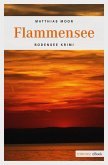 Flammensee (eBook, ePUB)