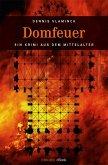 Domfeuer (eBook, ePUB)