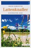 Lattenknaller (eBook, ePUB)