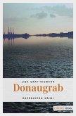 Donaugrab (eBook, ePUB)