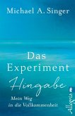 Das Experiment Hingabe (eBook, ePUB)
