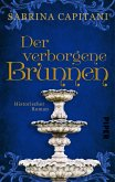 Der verborgene Brunnen (eBook, ePUB)