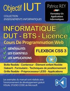 DUT Informatique - Flexbox (Tome 12) - Rey, Patrice
