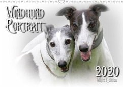 Windhund Portrait 2020 White Edition (Wandkalender 2020 DIN A3 quer)