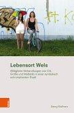 Lebensort Wels (eBook, PDF)