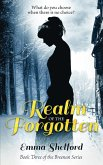 Realm of the Forgotten (Breenan Series, #3) (eBook, ePUB)