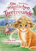 Mila Miau und der Glitzerstein / Die magischen Tierfreunde Bd.12 (eBook, ePUB)