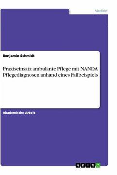 Praxiseinsatz ambulante Pflege mit NANDA Pflegediagnosen anhand eines Fallbeispiels