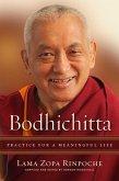 Bodhichitta (eBook, ePUB)