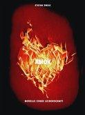Amok (eBook, ePUB)
