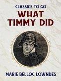 What Timmy Did (eBook, ePUB)