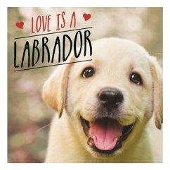 Love Is a Labrador: A Lab-Tastic Celebration of the World's Favourite Dog - Ellis, Charlie
